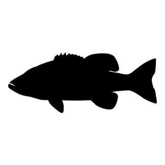 Blank Acrylic Keychain - Largemouth Bass