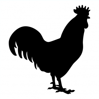 Blank Acrylic Keychain - Rooster
